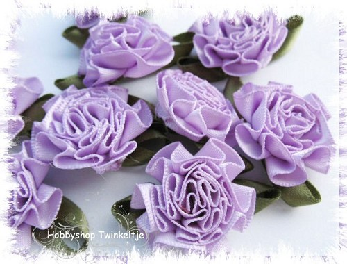 cabbage roses - paarse
