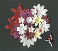 Flowers & Brads rood - wit mix - PB-603
